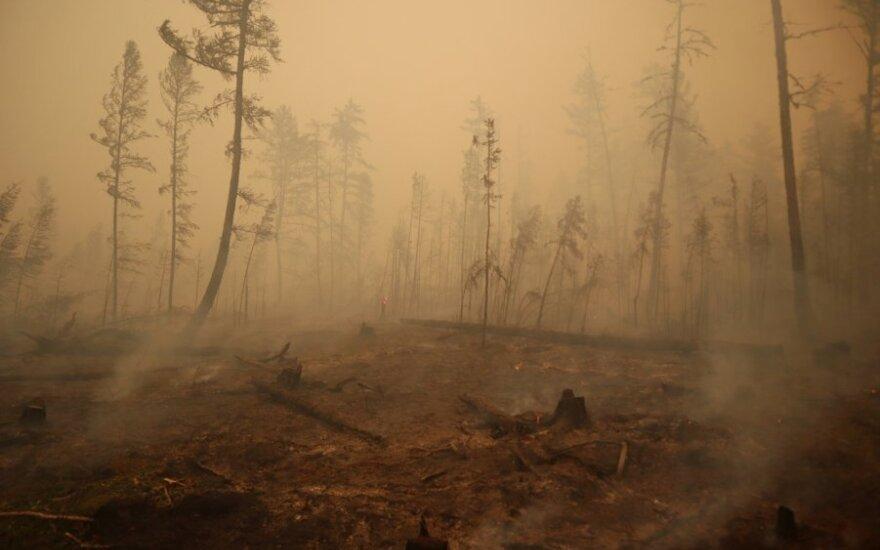 Rusijos Karelijoje dėl miško gaisro evakuojamas tūkstantį gyventojų turintis kaimas