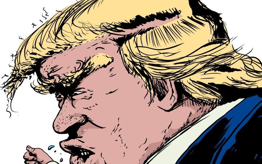 D. Trumpo karikatūra