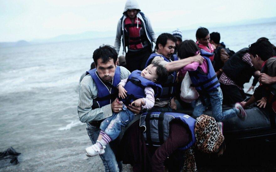 Europa moka šimtus milijonų eurų, kad atsigintų nuo apsimetėlių sirais