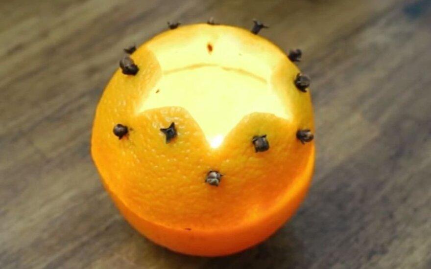 Žvakidė iš apelsino