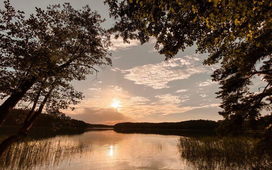 Niekinami ūkiniai miškai – kas tiesa, kas legendos