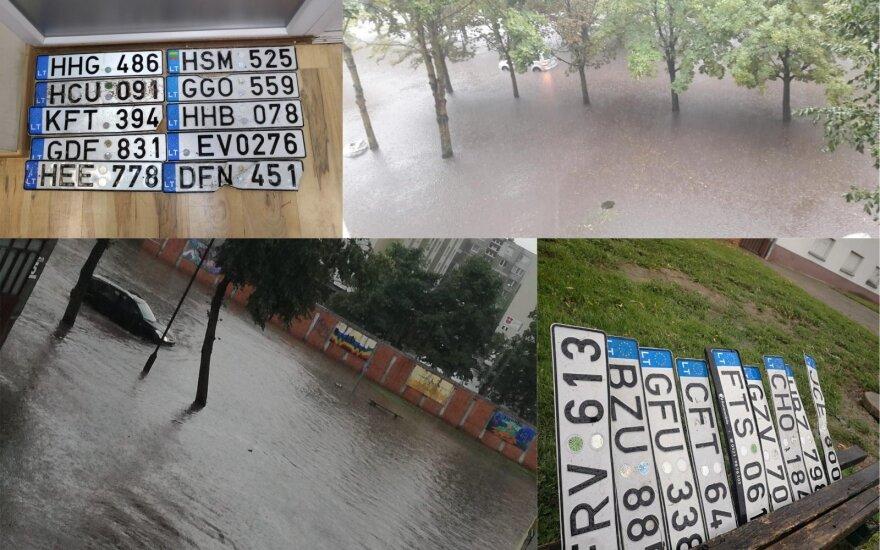 Liūtys nusiaubė lietuvių automobilius: pamestų automobilių valstybinių numerių – it grybų po lietaus