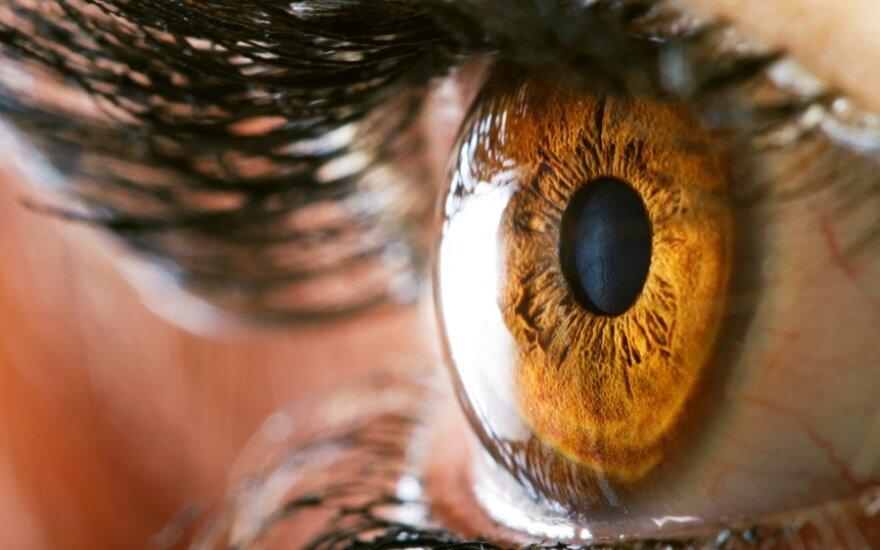 Grėsmingos akių ligos: tinklainės plyšimai ir atšokos