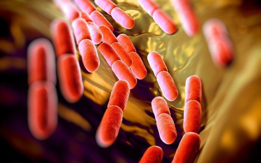 Antibiotikų apokalipsė: iki 2050 m. kas tris sekundes žus po žmogų