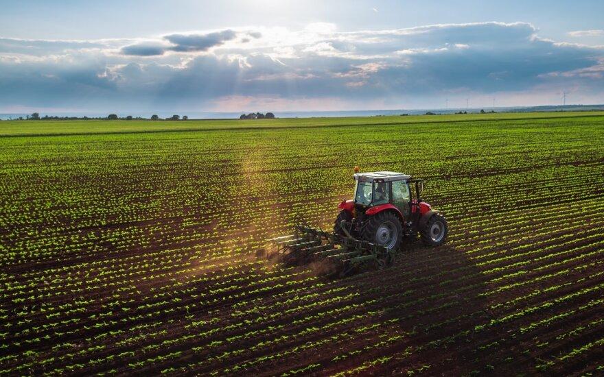 Vidurio Lietuvoje žemės ūkyje diegs dirbtinį intelektą