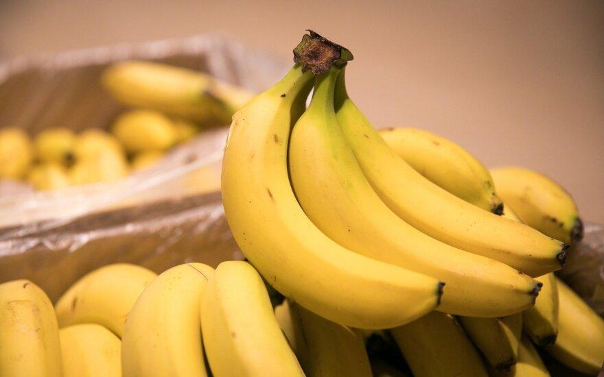 Bananų augintojų problemos didina kainas
