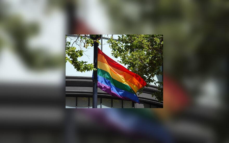 Vaivorykštės vėliava, gėjai, homoseksualai