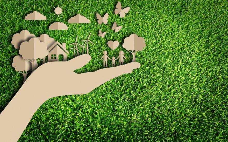 6 pasiūlymai, padėsiantys namus paversti ekologiškesniais