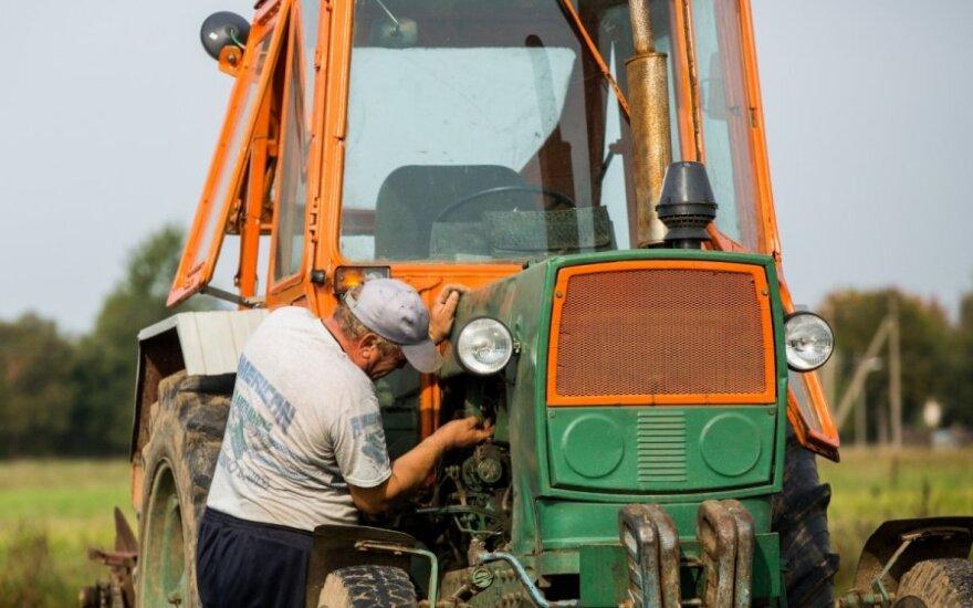Ardamas dirvą, ūkininkas aptiko neįkainojamą lobį