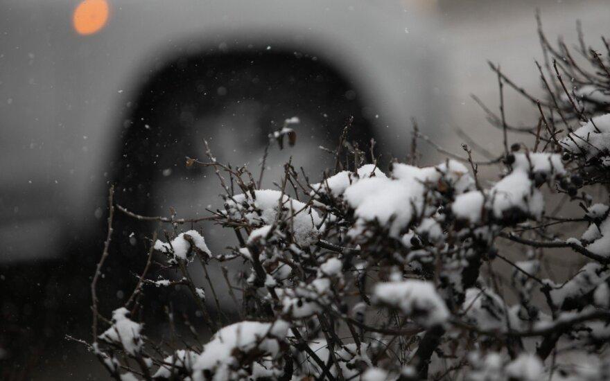 Orai: per Kalėdas – puokštė netikėtų reiškinių