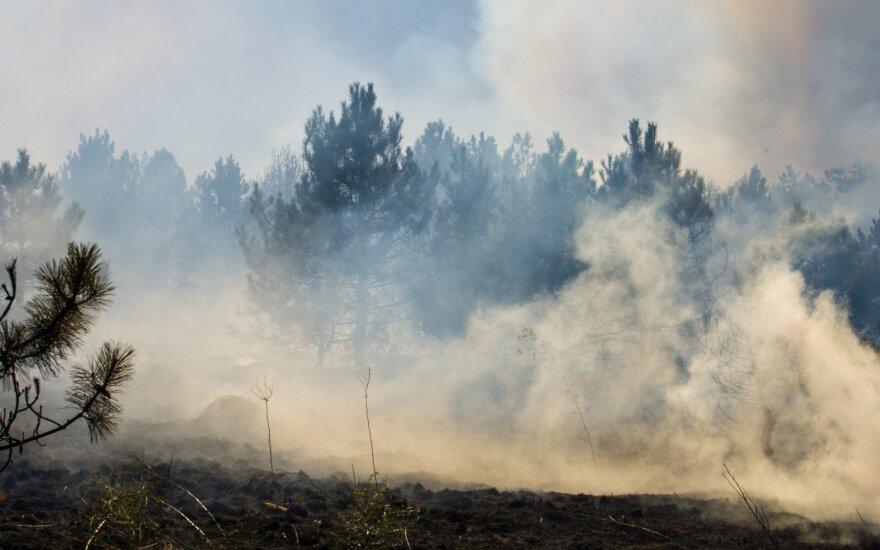 Šalyje penktadienį pasipylė dideli gaisrai – dega miškai, laukai ir netgi pelkė