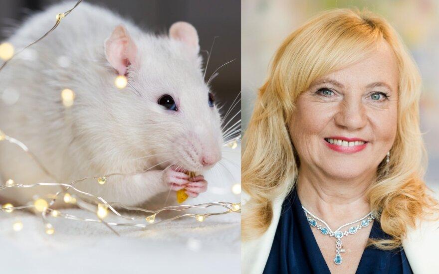 Astrologės Lolitos Žukienės patarimai, kad Baltosios Žiurkės metai būtų sėkmingi