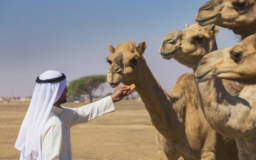 Laukinė Jungtinių Arabų Emyratų pusė: jokios prabangos čia nebus