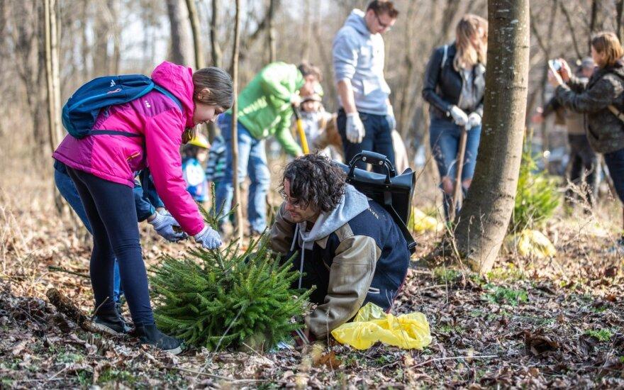 Vilniuje miestiečiai pasodino beveik 1000 medžių