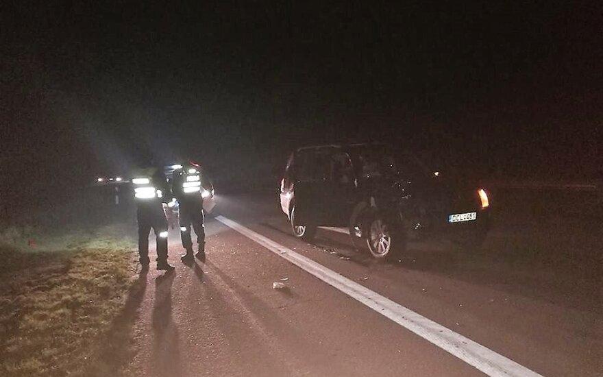 Autostradoje, Raseinių r., žuvo pėsčiasis