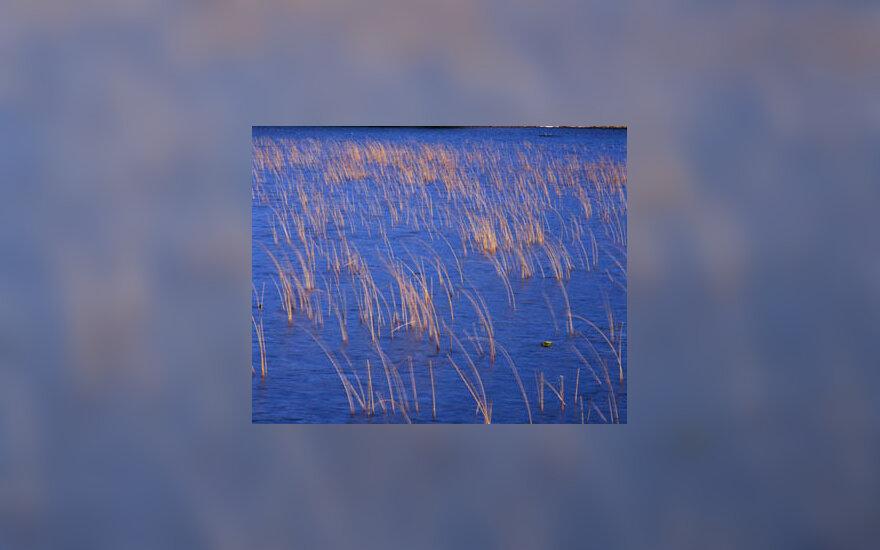 vanduo, ežeras, telkinys