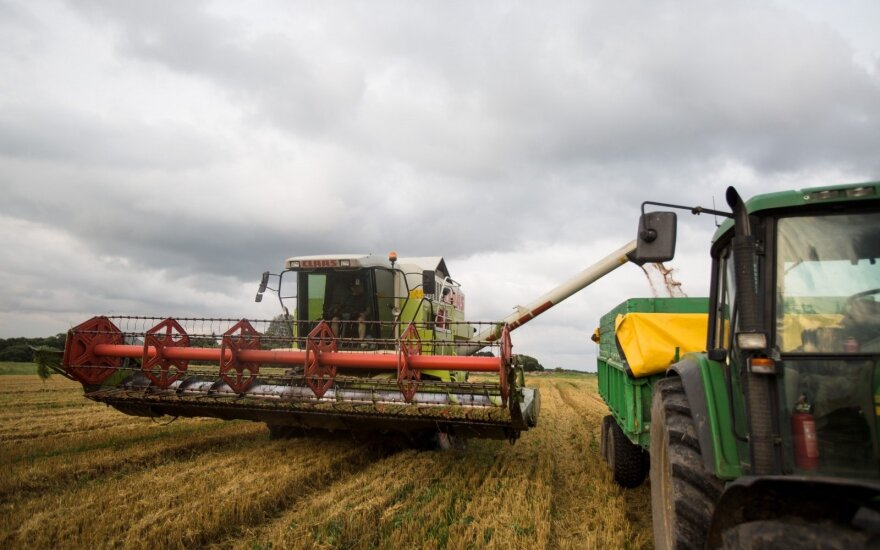 Rusijos galvos skausmas – kur dėti rekordinį grūdų derlių