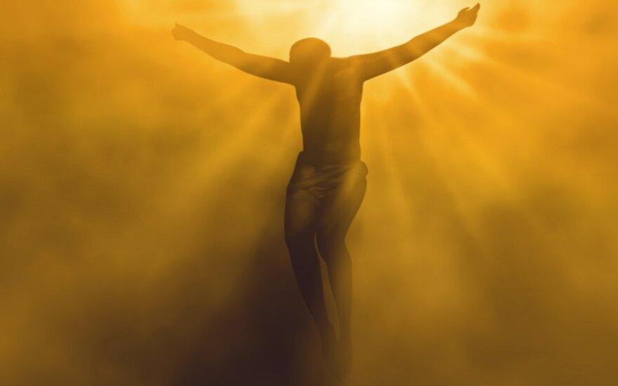 Sekmadienio Evangelija. Mokymas apie žaizdas