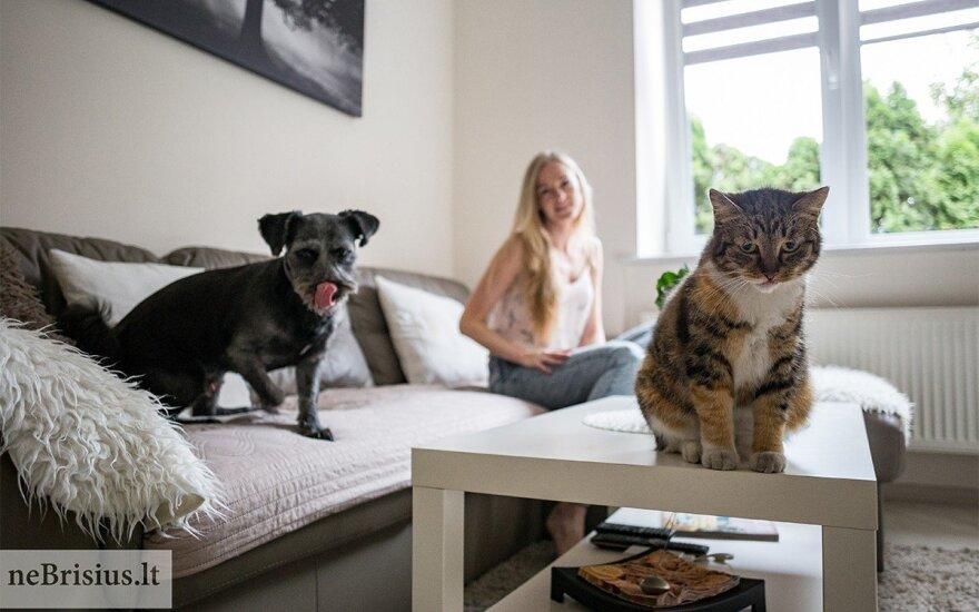 Liūdna gyvūnų patirtis – praeityje: gera grįžti namo, kai tavęs laukia