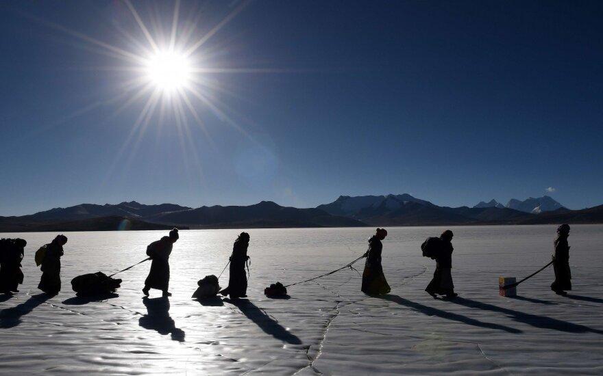 Viena didžiųjų pasaulio mįslių: išgyventi aukštai padėjo kitos gyvybės rūšys