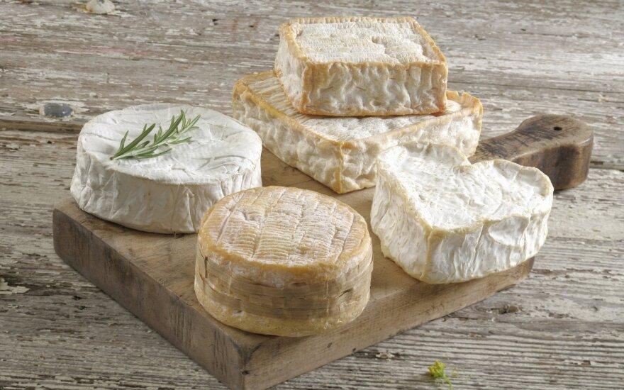Sūriai (asociatyvi nuotr.)