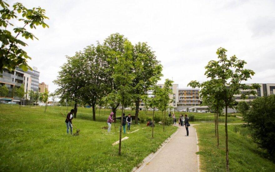 Ozo parke bendruomenės daržo atidarymas