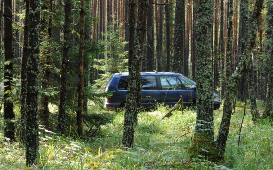 Siūloma gamtininkams leisti bausti už neleistinoje vietoje pastatytą automobilį