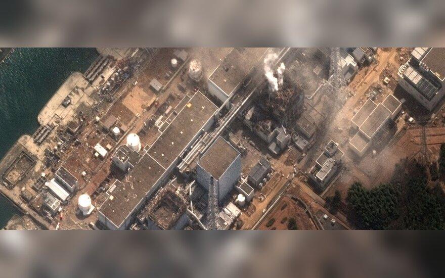 Rusijos specialistai: iš Japonijos elektrinės šešių reaktorių gali į aplinką nutekėti radioaktyvios medžiagos