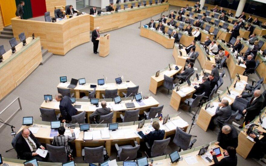 Seimo narių veiklą apibrėžti turės iki kovo