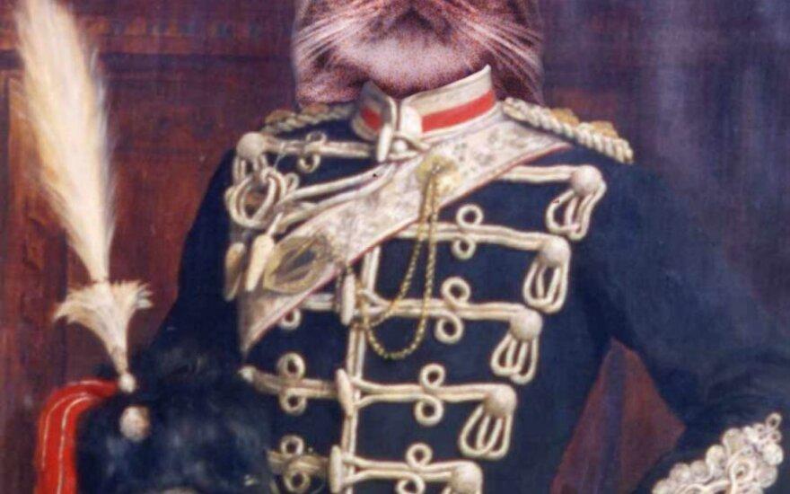 Leo – atviraširdis kačių karalius, kuris ieško namų