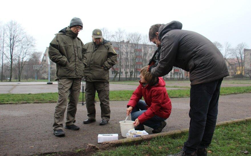Užnuodyta Klaipėda: geologijos tarnybos tyrimų išvados kelia rimtą nerimą