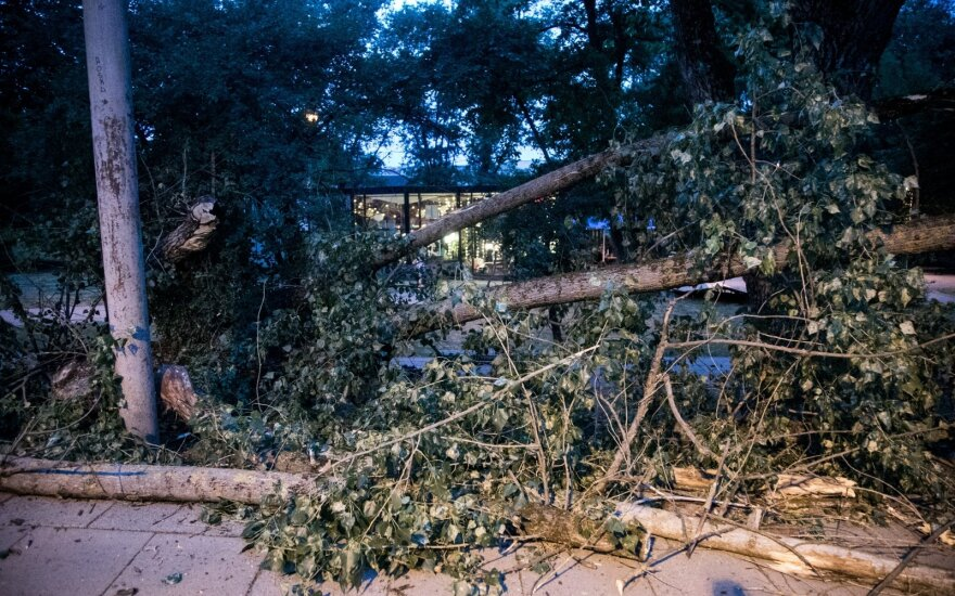 Ugniagesiai 471 kartą vyko šalinti vėjo išverstų medžių, darbai dar tęsiami