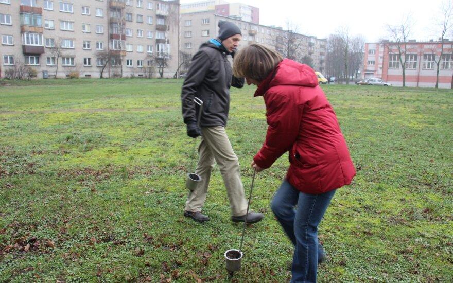 Chromo tarša Klaipėdoje: nauji tyrimai kelia dar daugiau klausimų, rekomenduojama nevalgyti daržovių iš vieno rajono