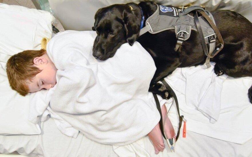 """Ištikimas šuo <span style=""""color: #c00000;"""">nepaliko savo mažojo</span> draugo net ligoninėje"""