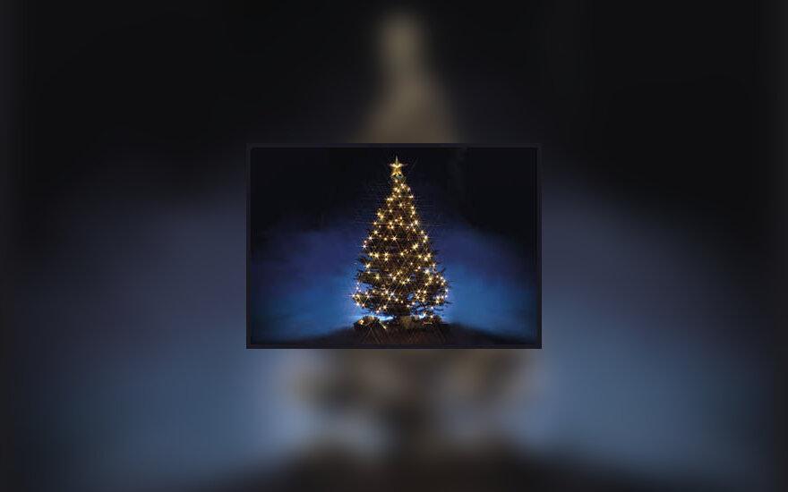 Kalėdinė eglutė