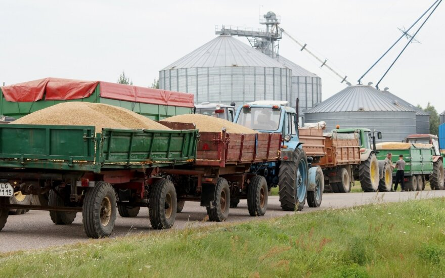 Rekordinis grūdų derlius Rusijoje gali smogti lietuviams