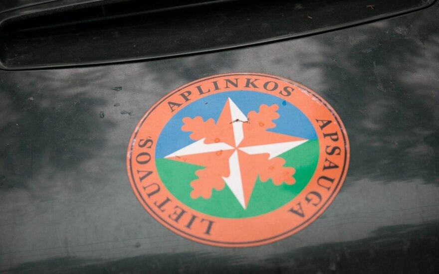 Vėbrienė paskirta Aplinkos apsaugos departamento vadove