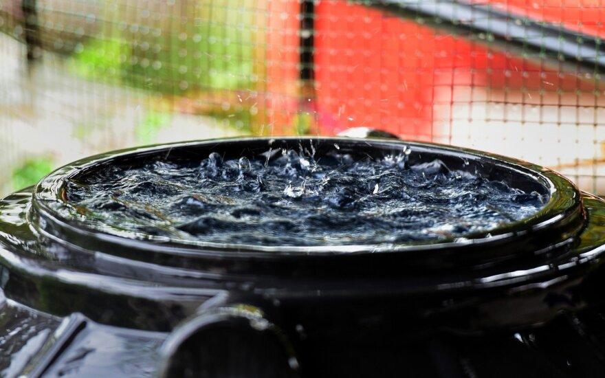 Laistyti daržo tiesiai iš šulinio pasemtu vandeniu nerekomenduojama – geriau pasinaudoti šiais patarimais