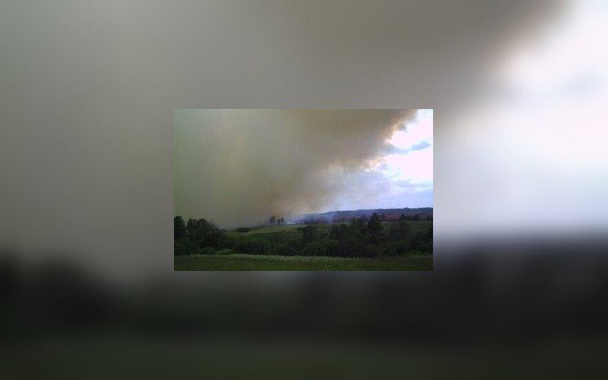 Radviliškio rajono durpyne kilo didelis gaisras, gausios ugniagesių pajėgos darbuojasi nuo pat ryto