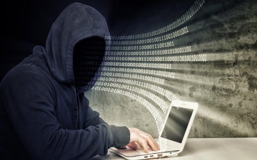 Dėl kibernetinių atakų prieš DELFI europarlamentarė R. Morkūnaitė kreipėsi į EK