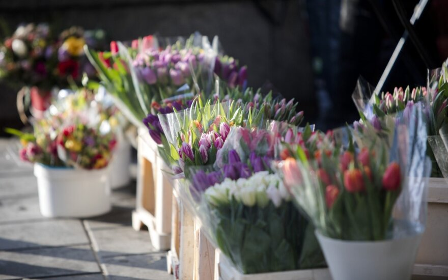 Tulpėmis žydintis Vilnius: kiek teko mokėti už moters šypseną