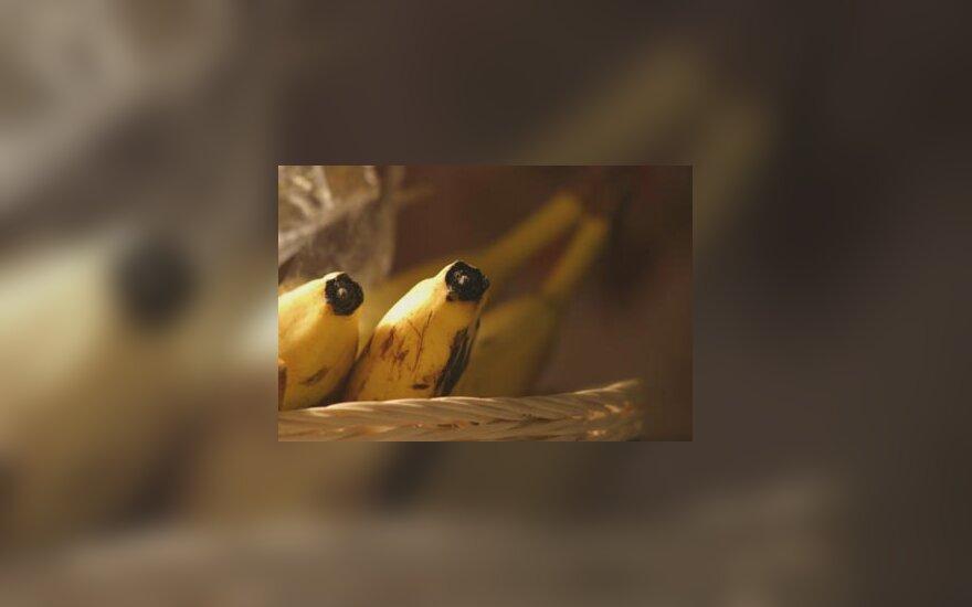 Bananai pintinėlėje