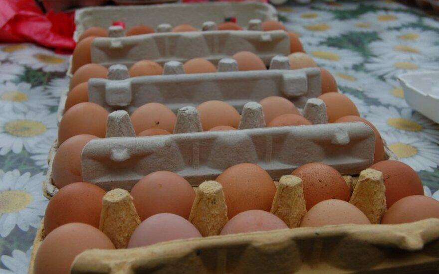 Kaimiški kiaušiniai