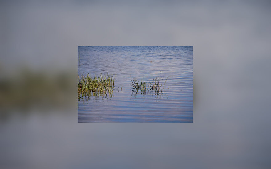 Ežeras, vasara, šiluma