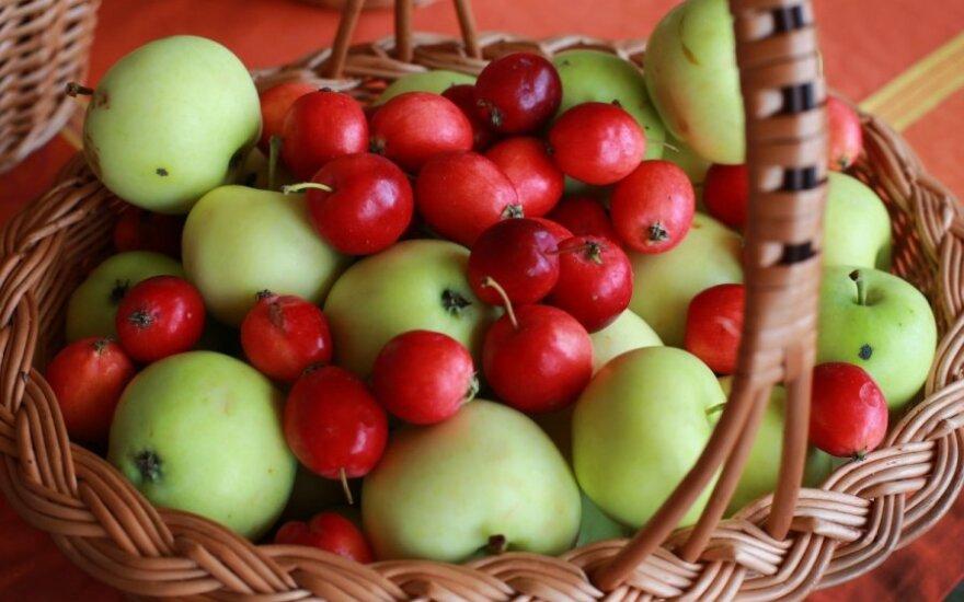 Tyrimas parodė, kokią įtaką mums daro maisto spalva