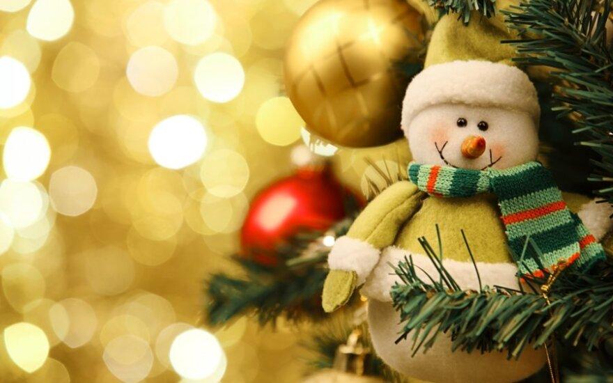 Įdomūs faktai apie kalėdinę eglutę
