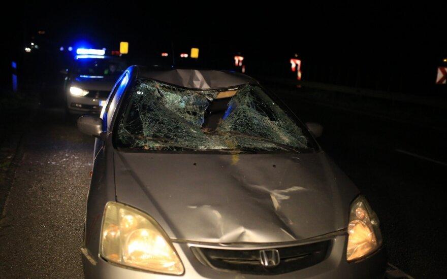 Perspėjo dėl gyvūnų keliuose: avarijų skaičius išaugo dukart, žalos – iki 20 tūkst. eurų