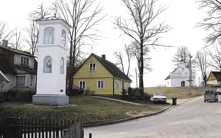 Vadovauti Valstybinei kultūros paveldo komisijai siūloma menotyrininkė Ščiglienė