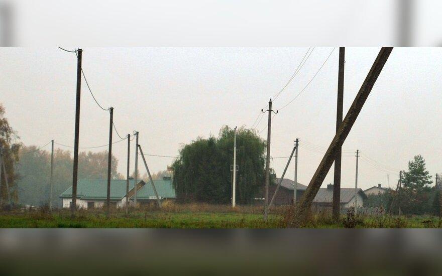 Elektros linijos šalia želdinių