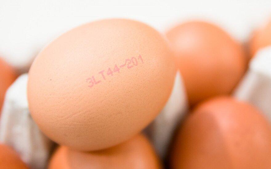 Vištų kiaušiniai